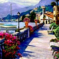 Seaside Pathway by Ron Chambers
