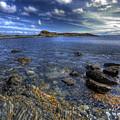 Seaside Snap by Wayne Sherriff