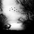 Seasons End Deer Geese by Michele Carter