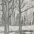 Seasons End by Harry Moulton