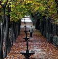 Seasons - Pathway by Aaron Jean
