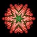 Seastar Lightmandala 2 by Robert Thalmeier