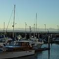 Seattle Marina by Mark Hill