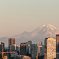 Seattle Panorama At Dusk by E Faithe Lester