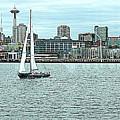 Seattle Sail by Maro Kentros