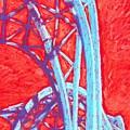 Seattle Structure by Jennifer Bonset