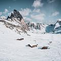 Seceda Dolomity, Italy  by Pavel Kasak