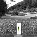 Secret Door 05 by Zena Zero