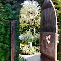 Secret Garden by Elaine Plesser
