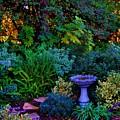 Secret Garden by Helen Carson