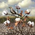 Secret Of The Mockingbird by M Spadecaller