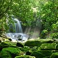 Secret Paradise - Hidden Appalachian Waterfall by Matt Tilghman