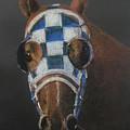 Secretariat - Jewel Of The 1973 Triple Crown by Arline Wagner
