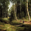 Secrets Of A Birch Forest by Isabella Howard