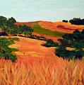 Sedgewick Reserve by Deborah Hildinger