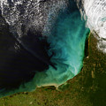 Sediment Off The Yucatan Peninsula by Artistic Panda