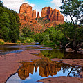 Sedona Cathedral Rock Reflections by Dave Dilli