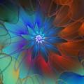 Seeking Centerdness  by David Lane