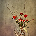 Seeking Harmony by Evelina Kremsdorf