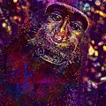 Selfie Monkey Self Portrait  by PixBreak Art