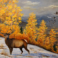 Selkirk Elk by Lucille  Owen-Huston
