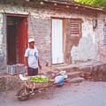 Selling Peppers In Trinidad Cuba Matte Finish by Joan Carroll