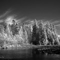 Semiahmoo River by Tom Buchanan