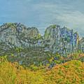 Seneca Rock West Virginia by David Waldrop
