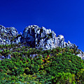 Seneca Rocks National Recreational Area by Thomas R Fletcher