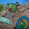 Senor Frog's - Playa Del Carmen by Frank Mari