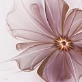 Sensitivity by Christine Kuehnel