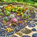Sensory Garden At Laurelwood Arboretum by Christopher Lotito