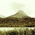 Sepia Alaska  by Chuck Kuhn