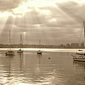Sepia And Sunbeams by Joseph S Giacalone
