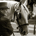 Sepia Carriage Horse With Handler by Dennis Dame