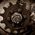 Sepia Gear by Chalet Roome-Rigdon