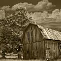 Sepia Michigan Barn Landscape by Randall Nyhof