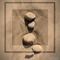 Sepia Rock 1 by Patty Vicknair