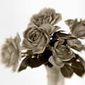 Sepia Roses by David and Carol Kelly