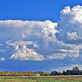 September Clouds by Bill Morgenstern