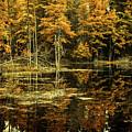 September Eve by Bob Orsillo