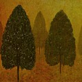 September Trees  by David Dehner