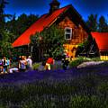 Sequim Lavender by David Patterson