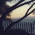 Serene Ocean View by Cynthia Marcopulos