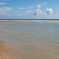 Serene Tidal Pool By The Sea by Daniel Caracappa