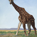 Serengeti Longneck by Elizabeth Rieke Hefley