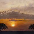 Serengeti Sunset by Elizabeth Rieke Hefley