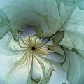 Serenity by Amanda Moore