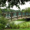Serenity Bridge by David Dunham