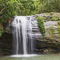 Serenity Falls by Carole Lloyd